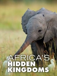 Cover Africa's Hidden Kingdoms, Poster