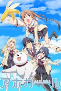 Cover der TV-Serie Aho Girl