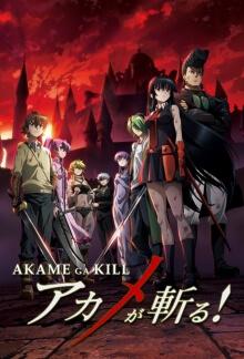 Cover von Akame ga Kill! (Serie)