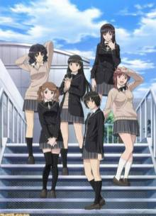 Cover der TV-Serie Amagami SS