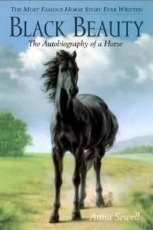 Cover von Black Beauty (Serie)