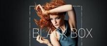Cover von Black Box (Serie)