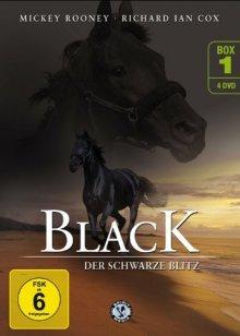 Cover von Black, der schwarze Blitz (Serie)