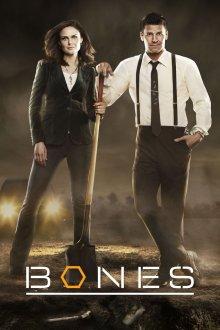 Cover von Bones - Die Knochenjägerin (Serie)