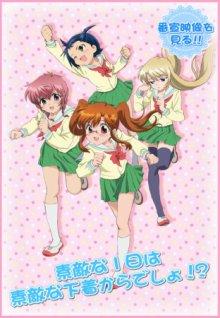 Cover von Chu-Bra!! (Serie)