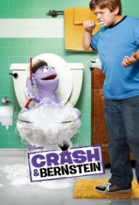 Cover der TV-Serie Crash & Bernstein