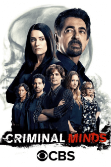 Cover von Criminal Minds (Serie)