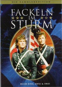 Cover von Fackeln im Sturm (Serie)