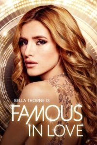 Famous in Love Serien Cover