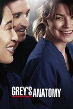 Serienstream Greys Anatomy