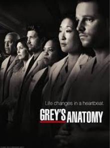 Cover von Grey's Anatomy - Die jungen Ärzte (Serie)
