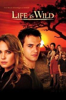 Cover von Life is Wild (Serie)