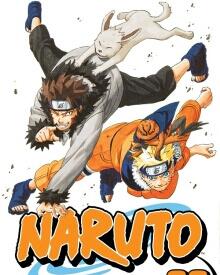 Cover von Naruto (Serie)