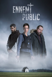 Public Enemy Serien Cover