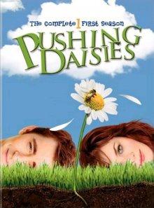 Cover von Pushing Daisies (Serie)