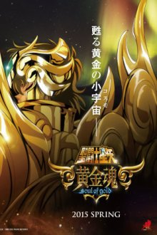 Cover der TV-Serie Saint Seiya: Soul of Gold