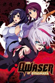 Cover von Seikon no Qwaser (Serie)