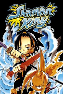 Cover der TV-Serie Shaman King