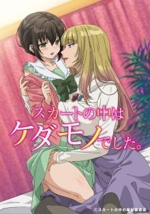Cover von Skirt no Naka wa Kedamono Deshita (Serie)
