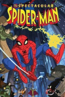 Cover der TV-Serie Spectacular Spider-Man