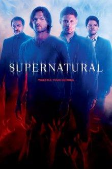 Cover von Supernatural – Zur Hölle mit dem Bösen (Serie)