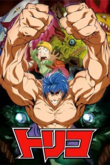 Cover der TV-Serie Toriko